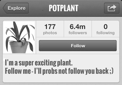 instagram_grey_potplant_nakedprgirl_cropped